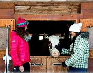 Farm visit