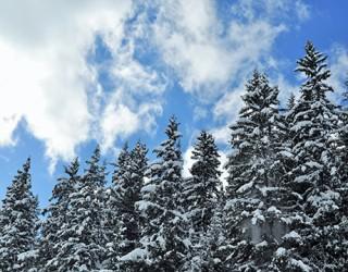 En Savoie Mont Blanc