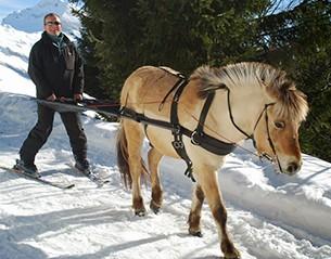 Equitation & Ski Joëring