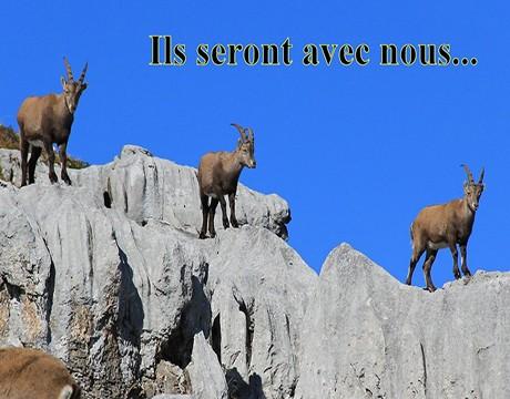 Maxime Viguier accompagnateur en montagne