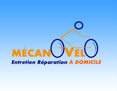 Professional Bike Mechanic