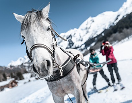 Horse Riding & Ski Joëring