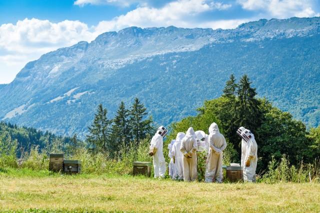 apiculteur-833